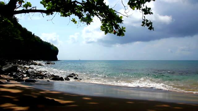 tropical island beach - lucia bildbanksvideor och videomaterial från bakom kulisserna