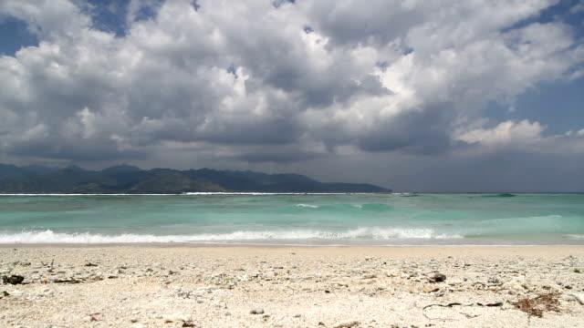 tropical island beach video