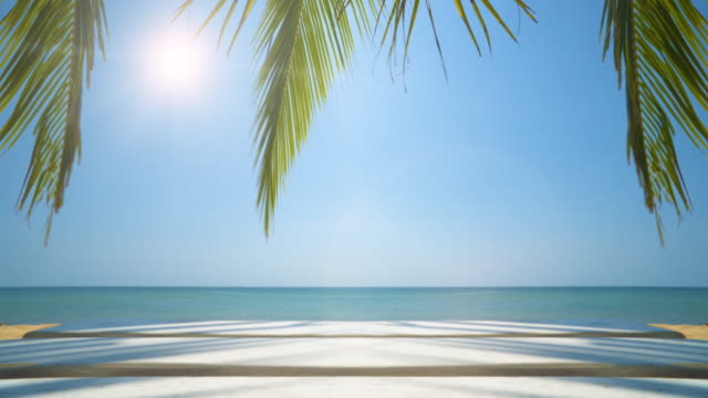 Tropical Island Vacation Idyllic Background. Exotic Beach And Palm Tree. seamless loop