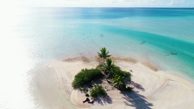 Tropical island with golden beach. Paradise holidays and tourism with palm trees. Water of the Ocean is clear blue. Travel tropical concept - aerial view with a drone - 4K