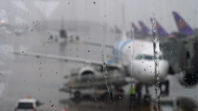 空港の熱帯雨 ビデオ