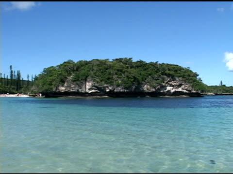 Tropical Shallows video