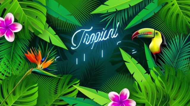 Tropical Summer Motion Graphics Animation with Colorful Flowers and Toucan Bird on Green Palm Leaves Background. Without Text Element Version Included