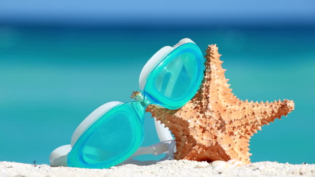 concetto di vacanze estive tropicale - immerse in the stars video stock e b–roll