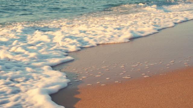 tropical sunrise over the beach. sea waves washing the sand - побережье мексиканского залива сша стоковые видео и кадры b-roll