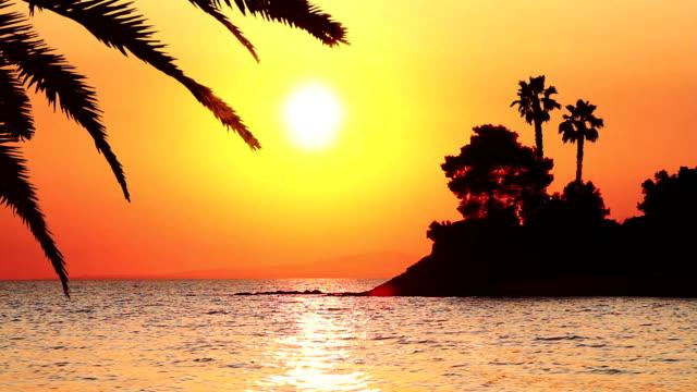 tropikalny zachód słońca - ibiza filmów i materiałów b-roll