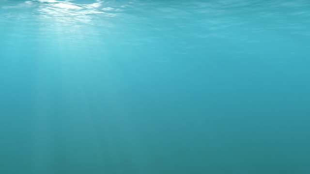 Tropical Underwater Loopable video