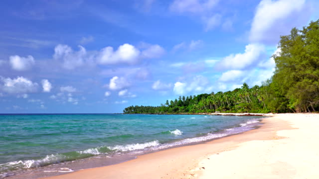 Tropical vacation island.
