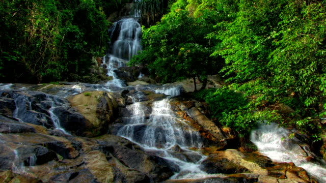 Tropical waterfall timelapse video