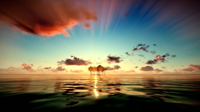 Trpical island isolated by water, seagulls flying at sunrise, camera fly video