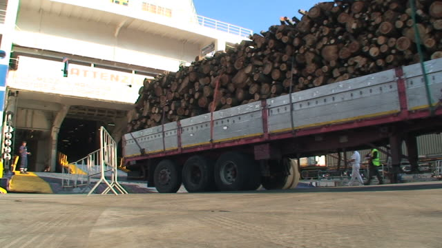 Truck loaded with timber embarking on a ferry-boat Truck loaded with timber embarking on a ferry-boat timber stock videos & royalty-free footage
