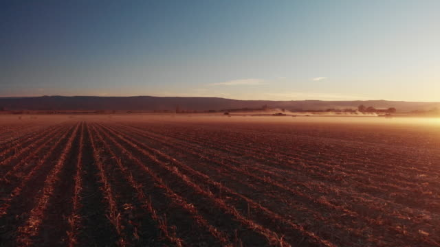 a trucking back aerial drone shot of a dusty corn field at sunset with tractors and mountains in the background in western colorado under a clear, blue sky - gospodarstwo ekologiczne filmów i materiałów b-roll
