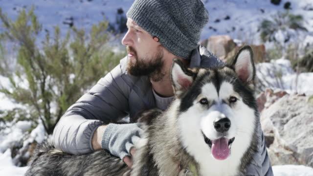a true bond never melts away - malamute video stock e b–roll
