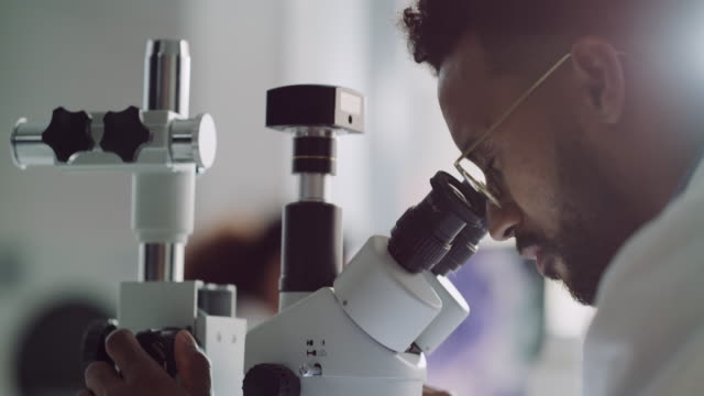 Trust him to figure out what it is 4k video footage of a handsome young male scientist looking through a microscope in a laboratory with his colleague in the background research stock videos & royalty-free footage