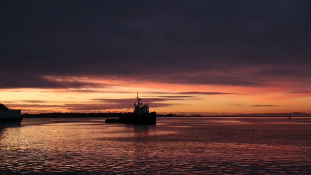 Tug and Barge, Fraser River First Light video