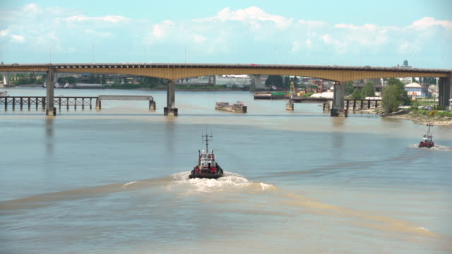 tugboats fraser river, british columbia, canada 4k uhd - fiume fraser video stock e b–roll