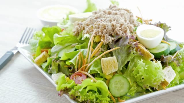 Tuna meat with vegetable salad Tuna meat with vegetable salad tuna seafood stock videos & royalty-free footage