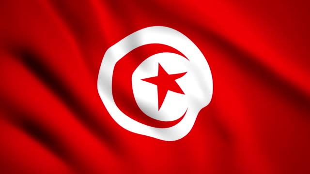 Tunisia flag Motion video waving in wind. Flag Closeup 1080p HD  footage