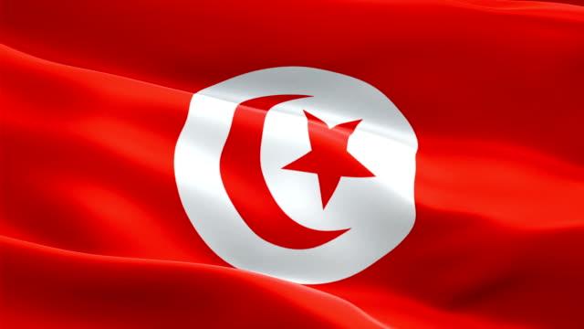 Tunisia waving flag. National 3d Tunisian flag waving. Sign of Tunisia seamless loop animation. Tunisian flag HD resolution Background. Tunisia flag Closeup 1080p Full HD video for presentation
