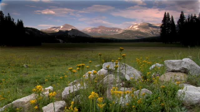 stockvideo's en b-roll-footage met tuolumne meadows in yosemite  national park - natuurgrond