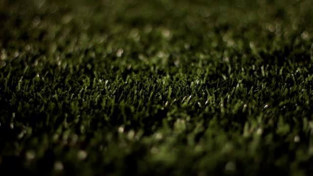 Turf Grass Night Dolly