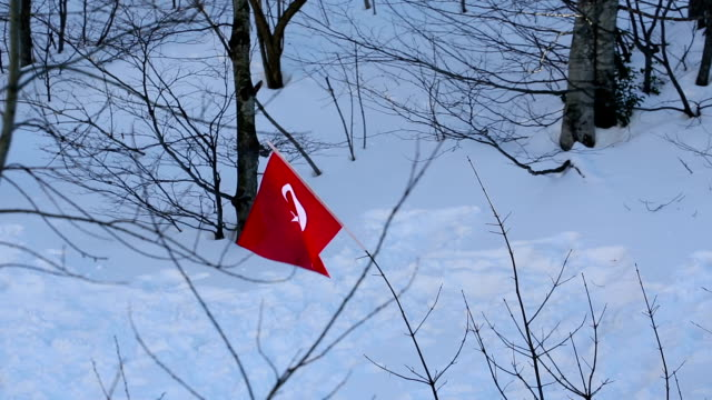 turkish flag and snow video