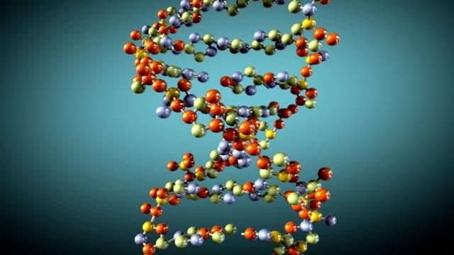 turning DNA, seamless loop video