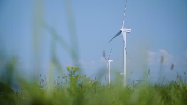vídeos y material grabado en eventos de stock de turbinas de viento giratorias creando energía con campos de hierba larga y vista de margaritas amarillas bajo cielo azul claro en cámara lenta - generadores