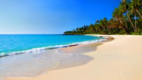 acqua di mare turchese e blu cielo sulla spiaggia tropicale - idillio video stock e b–roll