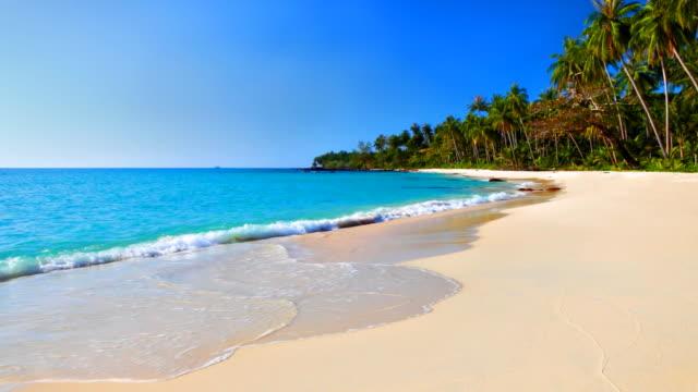 turquoise sea water and blue sky on the tropical beach - idyllisk bildbanksvideor och videomaterial från bakom kulisserna