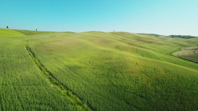 veduta aerea della campagna toscana - paesaggio collinare video stock e b–roll