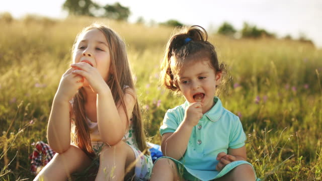 Two adorable child girl sitting on green meadow and enjoying a lollipop at sunset. Childs eating candy, sweets, sugar.Happy family relationship in the summer concept. Two adorable child girl sitting on green meadow and enjoying a lollipop at sunset. Childs eating candy, sweets, sugar.Happy family relationship in the summer concept. side lit stock videos & royalty-free footage