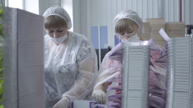 Two adult Caucasian factory workers in face masks and uniform talking and packing empty food packagings on factory. Portrait of women working on production line during Covid-19 pandemic quarantine. Two adult Caucasian factory workers in face masks and uniform talking and packing empty food packagings on factory. Portrait of women working on production line during Covid-19 pandemic quarantine. production line worker stock videos & royalty-free footage