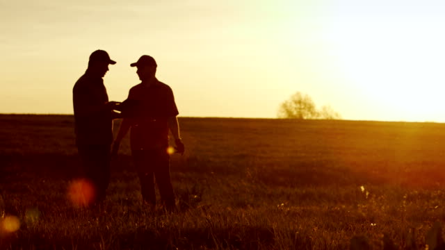 Two agronomists communicate on the field. In the rays of the setting sun, silhouettes are visible. Use a tablet - technologies in agricultural production - vídeo