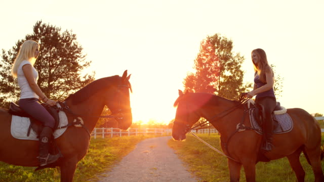SLOW MOTION: Two amazing horses with riders facing each other at golden sunset CLOSE UP SLOW MOTION: Two young smiling girls horseback riding brown stallion and mare on sandy footpath, enjoying in nature at golden sunset. Beautiful horses standing face to face at magical sunrise saddle stock videos & royalty-free footage