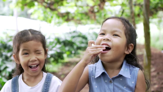 two asian childhood eats a harvested crop of grape in the plantation. - gusto aspro video stock e b–roll