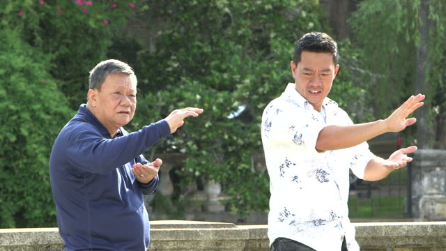 Two Asian men practicing tai chi in the park video