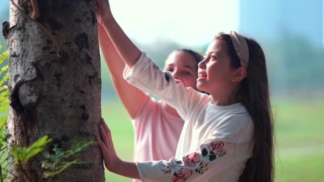 vídeos y material grabado en eventos de stock de dos hermosas chicas jóvenes con amigos alimentan a los animales y juegan en el parque soleado día de otoño en el parque, hablando y riendo en el parque - hermana
