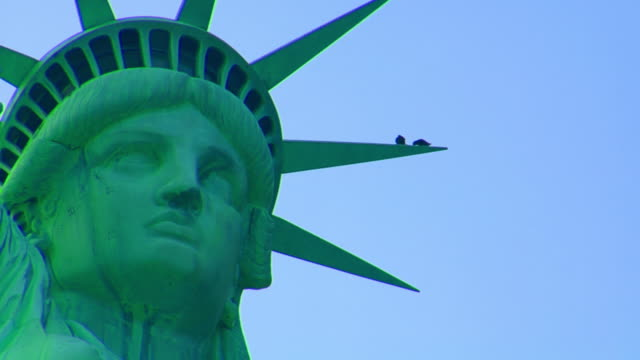 Two birds and Statue of Liberty. NYC video