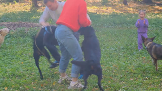Two black dogs are fighting.