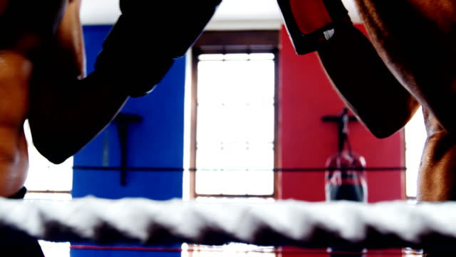 Two boxers fighting in boxing ring video