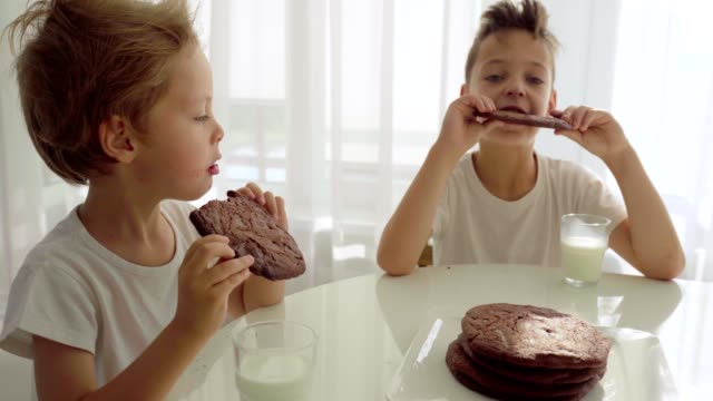 Two boy eating homemade chocolate cookies with milk at kitchen Two boy eating homemade chocolate cookies with milk at home kitchen cookie stock videos & royalty-free footage
