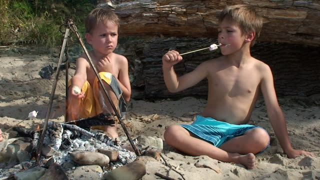 Two boys eating marshmallow on the picnic. Two boys eating marshmallow on the picnic. marshmallow stock videos & royalty-free footage