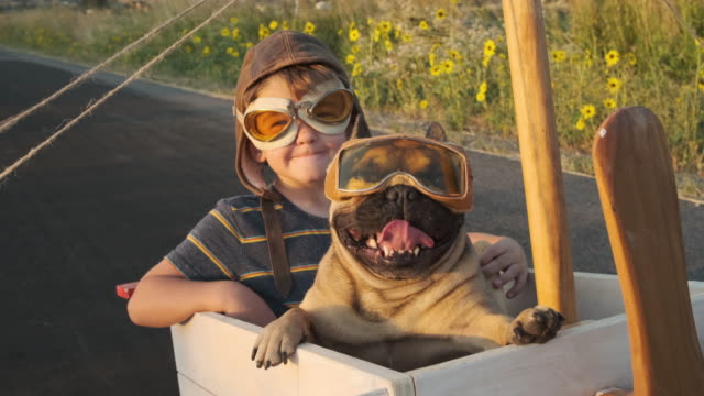 Two Boys Flying in Toy Airplane with Pet Dog