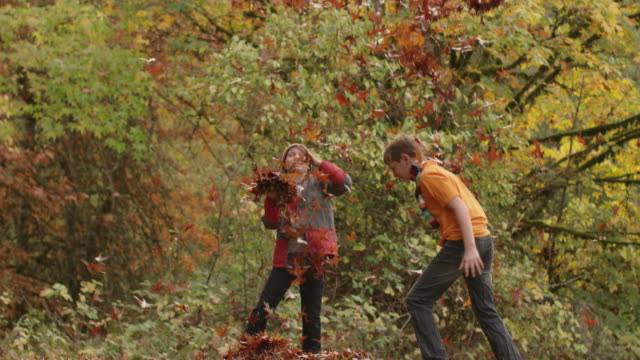 two boys in fall throwing leaves in slow motion - relazione umana video stock e b–roll
