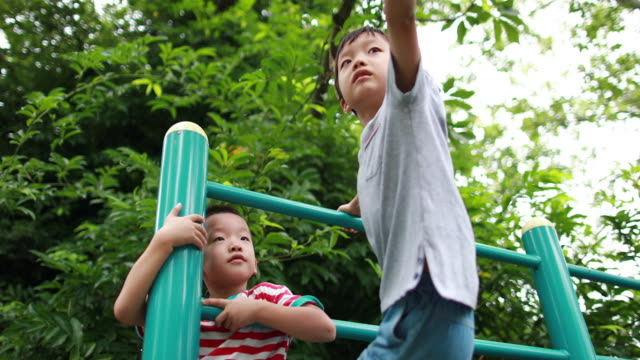 two brothers play in the park - inerpicarsi video stock e b–roll
