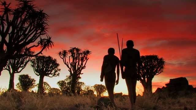stockvideo's en b-roll-footage met two bushmen - koecherbaumwald_san - culturen