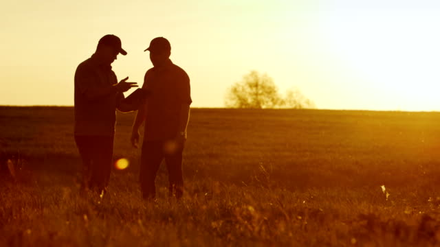 two businessman farmers shake hands with each other firmly. they talk on the field against a beautiful sunset, they use a tablet. deal - kukurydza jarzyna filmów i materiałów b-roll