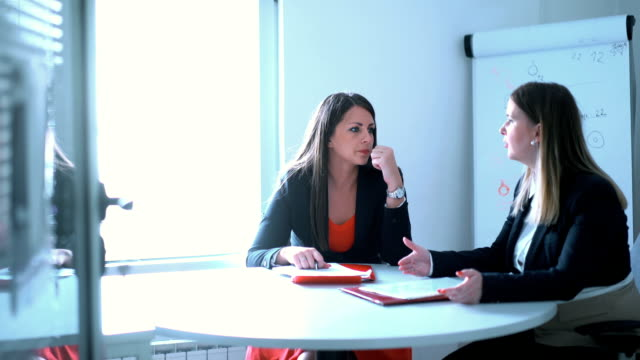 Two businesswomen in a meeting. video