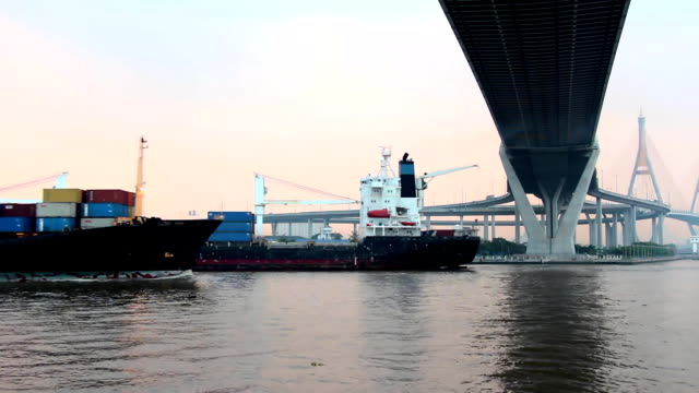 Two Carco Ship  Passing. video